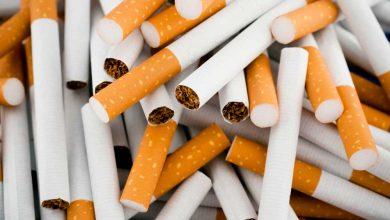 Photo of هزینه ۱۵ میلیون دلاری برای واردات کاغذ سیگار!