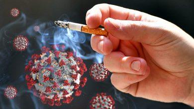 Photo of پاییز کرونایی در انتظار سیگاریها