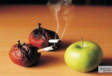 Photo of سیگار و قلیان با پوست شما چه خواهد کرد؟